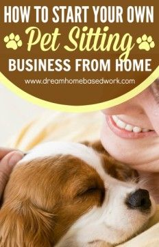 How To Start Your Own Pet Sitting Business from Home