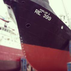 Whaling vessel Hvalur 9 in dry dock - Reykjavik, June 2014