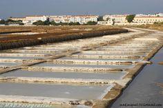 Salinas de Tavira. O melhor sal de Portugal vem daqui.