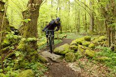 Crossing a tumbled down stone wall. Rider: Leo. Photo: Greg.