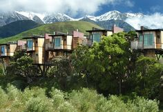 Hapuku Lodge and Tree Houses in New Zealand are surrounded by the mountains and ocean. Each tree house — set 30 feet above ground — includes a balcony, fireplace (read: in a tree!) and bathroom with heated floors and towel racks. What to Do: Whale watching, swimming with dolphins and seals, sea kayaking, deep sea fishing, mountain biking, surfing, hiking, golfing, wine tours and more Fun Fact: Kaikoura is a famous marine town known for their wildlife.