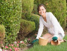 Durante esses 29 anos, a Nutriplan oferece um amplo mix de produtos de floricultura e jardinagem, unindo qualidade e harmonia da natureza a serviço do seu ambiente.