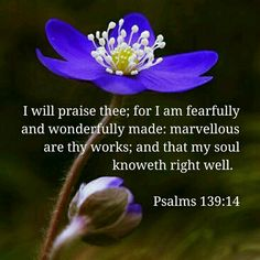 Psalms 139:14 I will praise Thee...