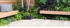 Mix of old scaffold boards for the deck and new western red cedar boundary and floating benches.