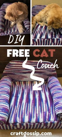 Knitting Patterns For Dogs, Knitting Blogs, Knitting Projects, Loom Knitting, Free Knitting, Crochet Projects, Cat Couch, Knitted Cat, Animal Projects