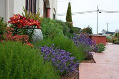 Mediterranean Garden Design - Creating a Tuscan Garden (10)