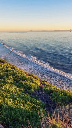 Peace Nature Wood Sea Ocean Nature #iPhone #6 #plus #wallpaper