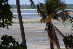 https://flic.kr/p/A2ebVj | Baixa-mar | Mongue | Moçambique
