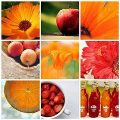 shades of orange - http://orangekitchendecor.siterubix.com/ - love this picture!  So orange and so pretty!  #ppgorange