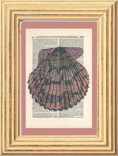 Scallop Sea Shell Pink Purple Beach Dictionary by HangWithUsToday, $7.00