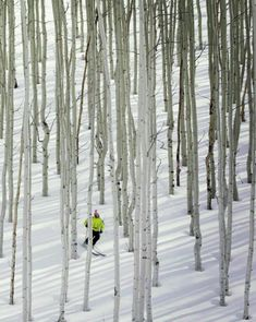 #1 North American Ski Resort: Deer Valley, Utah  www.alpineskiproperties.com