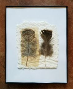 "Tea Bag Treasures Suzanne LeLoup-west ""Found Feathers"" Suzanne@suzannes-art-studio.com 8x10 framed Diy Tea Bags, Used Tea Bags, Tea Bag Art, Tea Art, Coffee Filter Art, Collage Techniques, Collage Art Mixed Media, Coffee Painting, Feather Art"