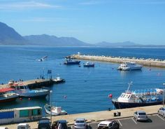 Stunning views from our apartments (Whale Coast hotel) Hotel Apartment, Apartments, Coast Hotels, Holiday Resort, Whale Watching, Stunning View, South Africa, African, World