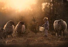 Фотографии своих детей с животными - Лучшие фото из Интернета
