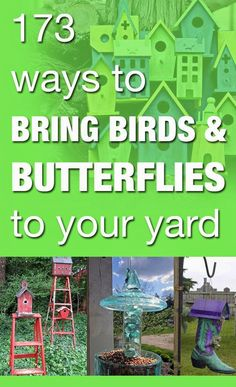 173 ways to bring birds & butterflies to your yard - lots of cool repurposing ideas!!!