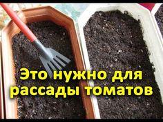 Small Farm, Organic Gardening, Garden Design, Home And Garden, Stuffed Peppers, Youtube, Sodas, Gardening, Organic Farming