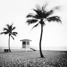 Cityscape Photography, White Photography, Fine Art Photography, Landscape Photography, Panorama Camera, Fort Lauderdale Beach, Black And White Landscape, Contemporary Landscape, Landscape Photos