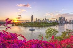 Discover everything that Queensland has to offer. Explore our stunning destinations and enjoy incredible events. Visit the official site for Queensland Australia here.