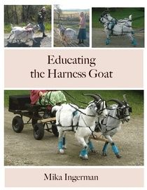 Educating the Harness Goat