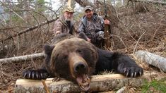 Amur bear hunt with Sergey outfitter 2017