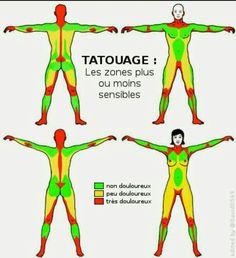 Tattoo area Source by maythecita Dream Tattoos, Time Tattoos, Wolf Tattoos, Body Art Tattoos, Tattoo Pain Chart, Tattoo Now, Disney Tattoos, Paper Roses, Tattoo Studio