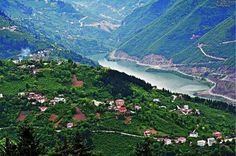 Bahçekaya köyü - Maçka - Trabzon / Türkiye