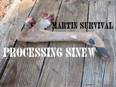 In this video Jeff shows discusses the properties of sinew and the tools needed to process sinew. After our discussion we show you up-close and in depth how ...