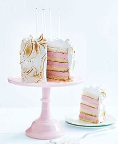Birthday Cake Recipe - Kids Birthday Cakes - Bombe Alaska Cake