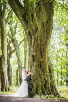 Haigh hall wedding woodland, amazing trees and light! Pixies in the Cellar Wedding Photography
