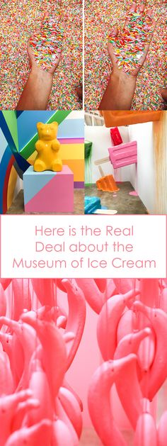 Everything you need to know about the Museum of Ice Cream
