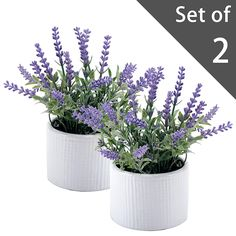 Small Artificial Lavender Plant, Faux Flowers in White Ceramic Ribbed Pot, Set of 2 ** To view further for this item, visit the image link. (This is an affiliate link and I receive a commission for the sales)