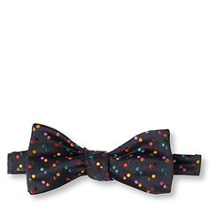 Loving this fun dotted bow tie - would look great with a blazer and jeans.