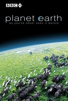 Planet Earth Series [2007] by BBC and executive producer Alastair Fothergill. A stunning 11-part series that captures rare action, impossible locations, and intimate moments with our planet's best-loved, wildest, and most elusive creatures.