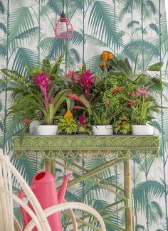 57 Fresh Tropical Home Decoration Ideas Interior Tropical, Tropical House Design, Tropical Home Decor, Tropical Houses, Tropical Garden, Coastal Decor, Tropical Furniture, Estilo Tropical, Tropical Kitchen