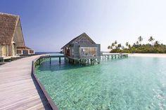 Maldives Luxury Resorts - Anantara Kihaavah Villas  #bmrtg #Maldives #TravelStoke #anantarakihavah #indianocean #AsiaTravel #WorldTravelGuide #LalumiTravels #warrenjc #sunnysideoflife #maldivity #travel #traveling #vacation #dive #surfing #adventureculture #instagood #india #holiday #lagoon #beach #instapassport #instatraveling #mytravelgram #travelgram #igtravel #CrystalClearWater #LonelyPlant #adventure