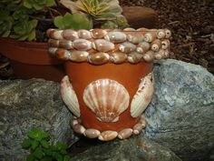 planter - use a waterproof glue if using outside Nice but I'd leave the shells off the middle. Sea Crafts, Clay Pot Crafts, Diy And Crafts, Arts And Crafts, Seashell Art, Seashell Crafts, Colchas Quilt, Seashell Projects, Decorated Flower Pots