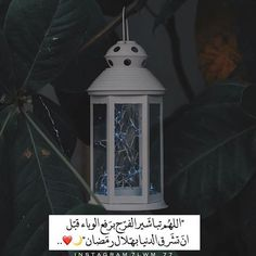Oroville Wa, Ramadan Cards, Arabic Art, Funny Art, Good Morning Quotes, Positive Quotes, Qoutes, Instagram, App Icon