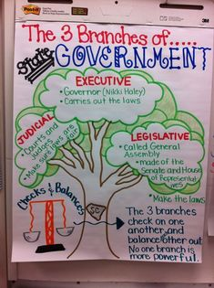 Branches of government anchor chart (image only)