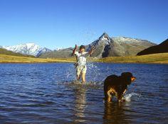 Urlaub mit Hund Bergen, Mountains, Nature, Wellness, Travel, Fenced Garden, Air Fresh, Naturaleza, Viajes