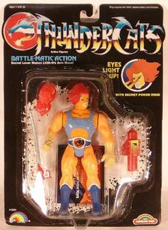 Thundercats, my brothers got these for Christmas one year and I wanted to play with their toys more then mine!