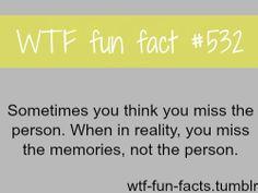 wtf fun fact | Tumblr