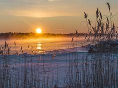 winter by ulrica wik, via 500px