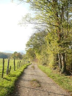 Alsace, Countryside, Paths, Hiking, Country Roads, Nature, Beautiful Landscapes, Country, Life