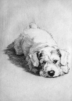 Scottie Dog Cecil Aldin etchings, oils and watercolours - Robert Perera Fine Art Gallery of Lymington
