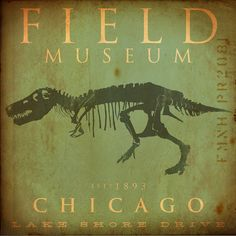 Field Museum Chicago Dinosaur Tyrannosaurus Rex Sue original graphic art on canvas by stephen fowler