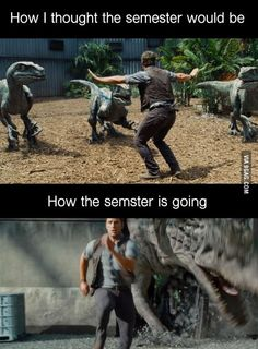 """Every Semester I'm like: """"this semester I'll keep control and get shit done..."""""""