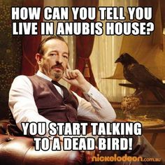 How can you tell you live in Anubis House? You start talking to a dead bird! So true lol