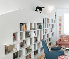 Light-filled home for book lovers and their cute cats is built of recycled materials