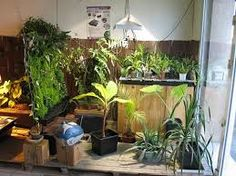.Max Grow shop provides an exclusive range of grow shop for your every type of gardening requirements. Book your order online. We are always available for important clients to help them. Hydroponic Shop, Hydroponic Supplies, Grow Shop, Grow Kit, Grow Lights, Tent, Plants, Gardening, Range