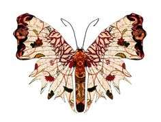 -autumn-wings-butterfly-print